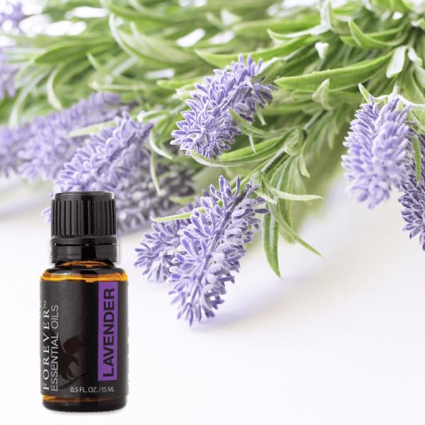 forever-essential-oil-lavender-olio-essenziale-lavanda-relax